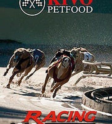 Kivo racing performance
